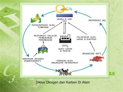 Pengantar Ekologi Hewan by Pengantar Dasar Dasar Ekologi