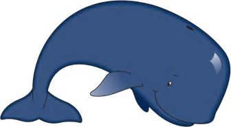 pic of a whale cliparts co
