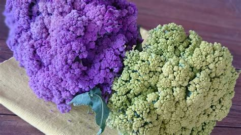 colored cauliflower colored cauliflower what to cook today