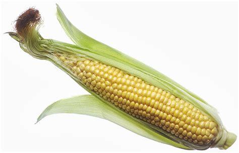 simple ayurvedic health tips corn silk tea