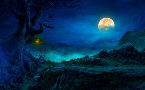 in the moonlight which is moonlight wallpapers wallpapersafari