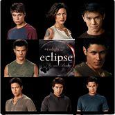 twilight-eclipse-wolf-pack