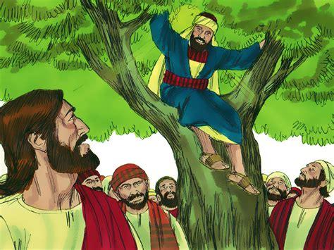 imagenes de la vida de zaqueo zacchaeus 171 re start