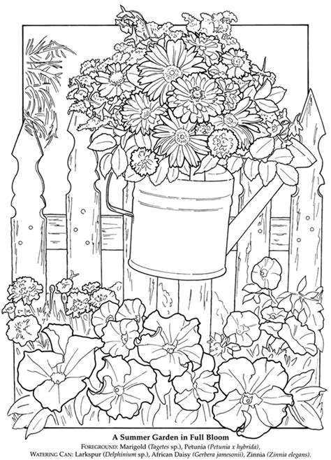 coloring pages for adults garden dover publications a printable flower garden pic to