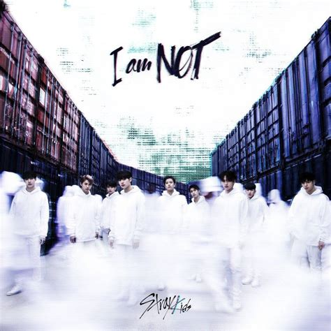 I Am Not stray i am not mp3 itunes plus aac
