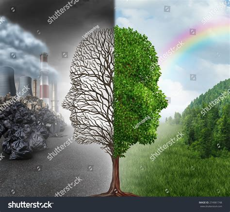 Plants And The Environment environment change global warming environmental concept