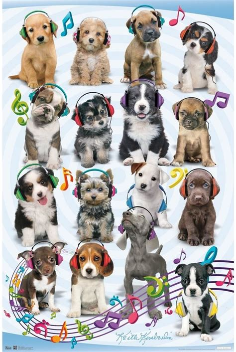 puppy posters poster print puppy kid home new ebay