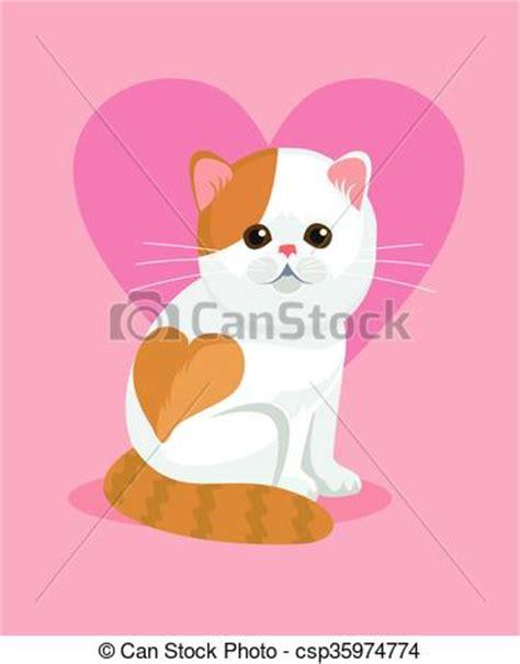 gatto in appartamento carino gatto naso appartamento carino appartamento