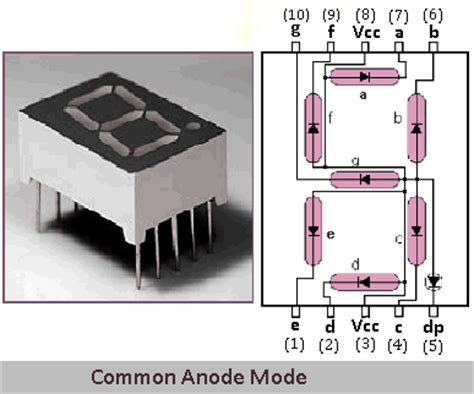 common anode cathode led display edutute technologies 7 segment display interfacing with 8051