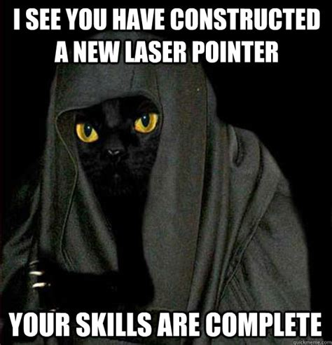 Laser Cat Meme - i see you have constructed a new laser pointer your skills