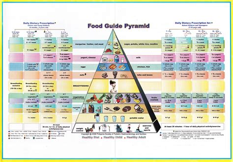 the food guide to food pyramid for children pinoykidsmd