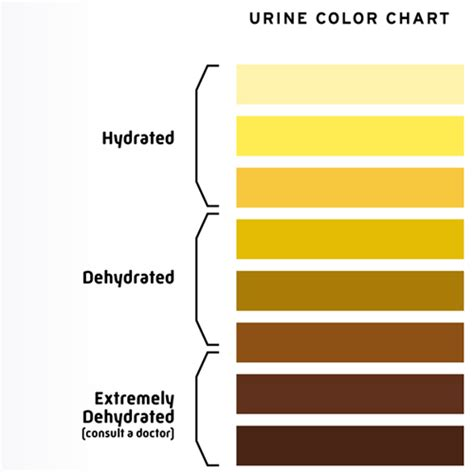 color of urine when dehydrated spontaneous speech detecting dehydration in two steps