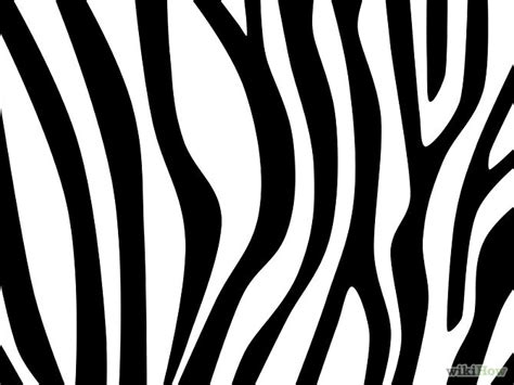zebra lines pattern draw zebra stripes
