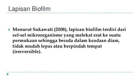 biofilm adalah pengolahan limbah laundry dengan metode biosand filter dan