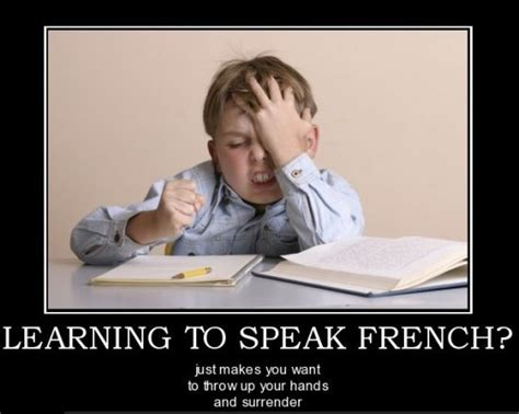 Funny French Memes - french meme memes