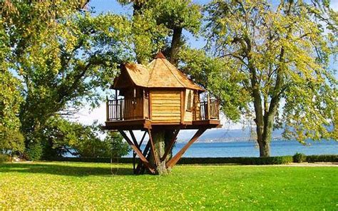 tree houses to buy tree houses to buy design of your house its good idea for your life