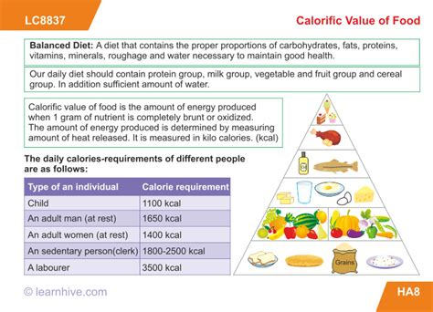 carbohydrates grade 9 learnhive icse grade 9 biology human nutrition lessons