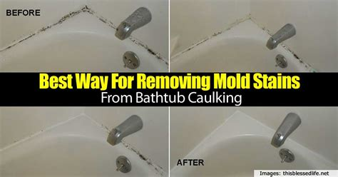 How To Remove Mold From Bathtub Caulk best way for removing mold stains from bathtub caulking