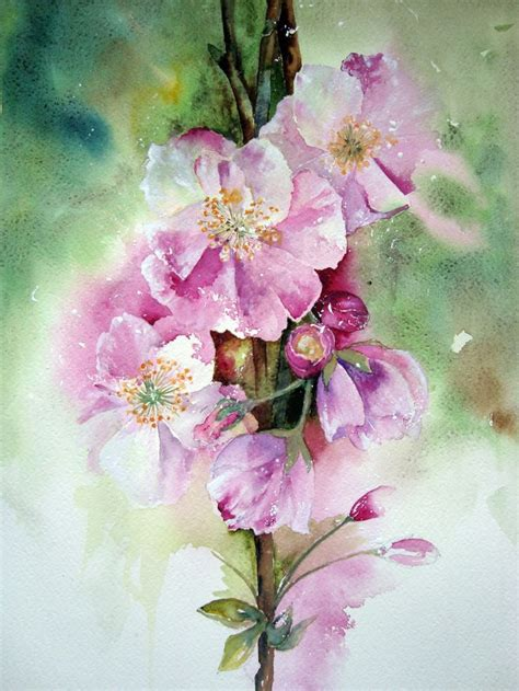 libro watercolour flower portraits 104 best watercolor bloemen images on water colors watercolor flowers and