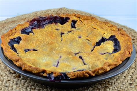 blue ribbon recipes blue ribbon blueberry pie recipe food