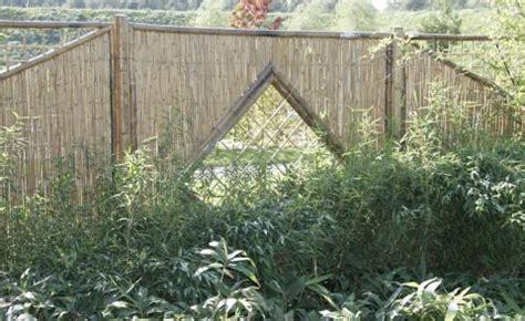 Sichtschutz Fenster Entfernen by Sichtschutz Materialien Pflanzen Tipps Mein Sch 246 Ner