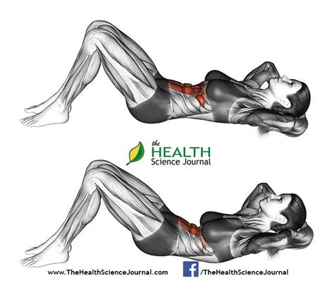 66 best ab workouts for and part 1 the health science journal