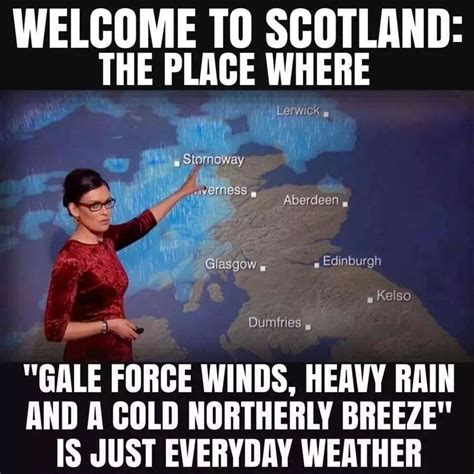 Scottish Meme - 124 best images about scottish things that make us laugh
