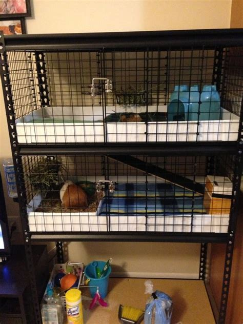 Guinea Pig Cage Shelf And R by Diy Utility Shelf Guinea Pig Cage Hamsters