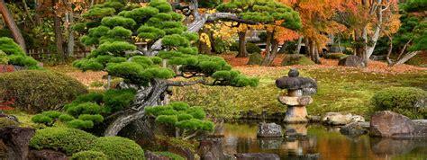imagenes con movimiento de jardines concepto de jardines japoneses paisajistas marbella