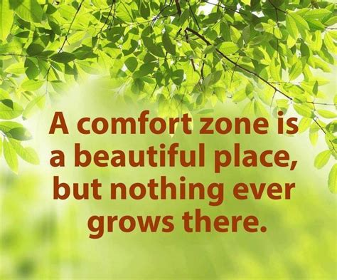outside your comfort zone quotes comfort zone quotes sayings comfort zone picture quotes