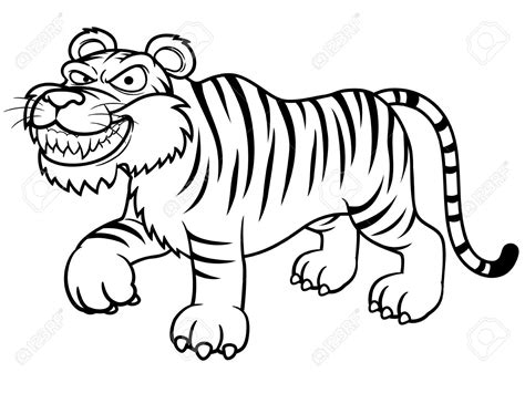 cartoon tiger coloring page white tiger clipart coloring book pencil and in color
