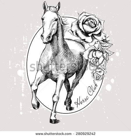 draw horse illustrator horse draw stock images royalty free images vectors
