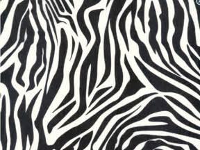 zebra tissue paper zebra print tissue