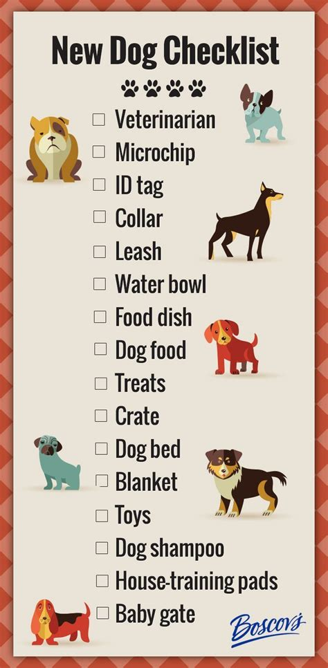 new puppy supplies list 17 best ideas about on pet