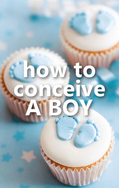 Calendar When To Conceive A How To Conceive A Boy