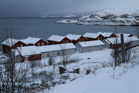 norvegia turisti per caso norvegia alta viaggi vacanze e turismo turisti per caso