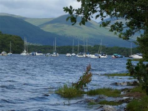 boats loch lomond balhama boats picture of loch lomond and the trossachs