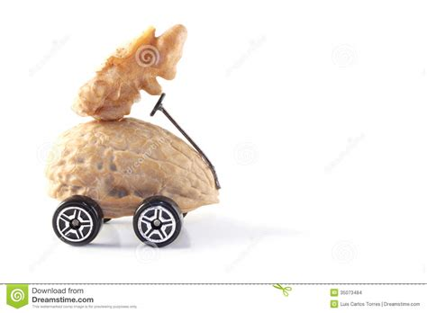 drive you nuts you drive me nuts stock images image 35073484