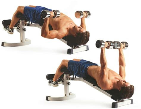 decline bench dumbbell press chest exercise men s health singapore