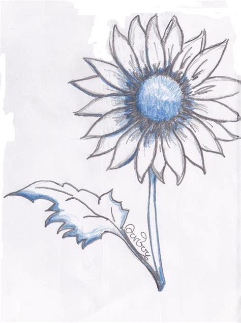 disegni a matita fiori arte semplice e poi il disegno dei fiori visti anche