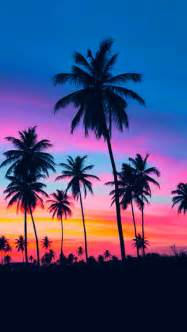 palm tree wallpaper palm trees iphone wallpapers