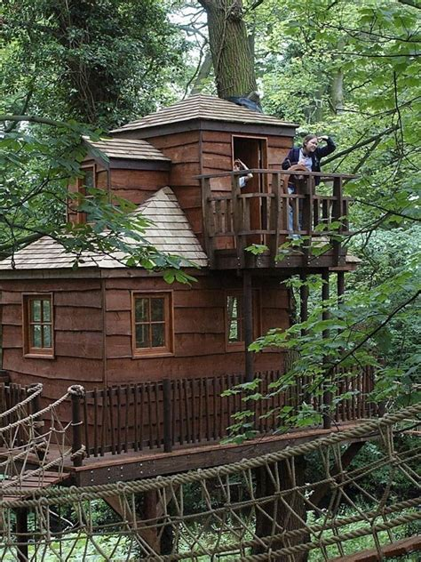 cool tree houses cool treehouses from around the world cool things