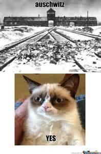 Grumpy Cat Meme Happy - grumpy cat is happy by kornsqueezer meme center