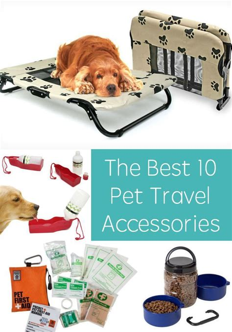 Pet Accessories 2325 best images about cool accessories on
