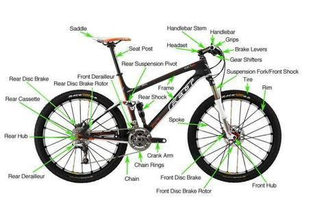 the anatomy of a mountain bike cool biking zone related keywords suggestions for mountain bike parts