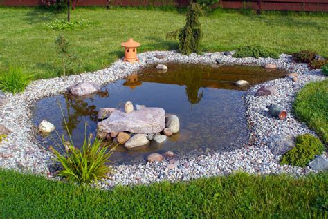 backyard bassin 37 backyard pond ideas designs pictures
