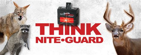 nite guard solar predator control light 4 pack nite guard solar predator control light 4 pack amazon ca