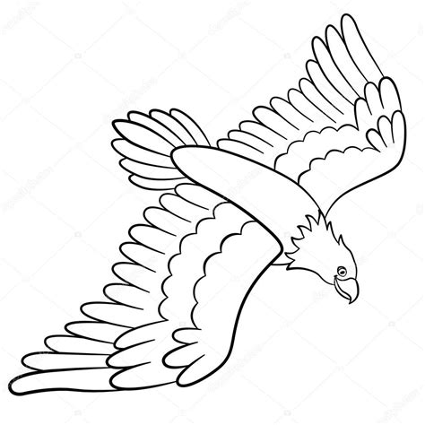 cute eagle coloring pages cute cartoon eagles coloring pages