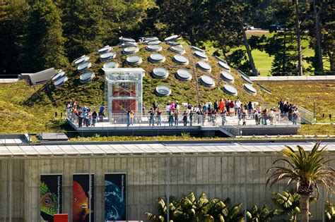 greenroofs com projects california academy of sciences