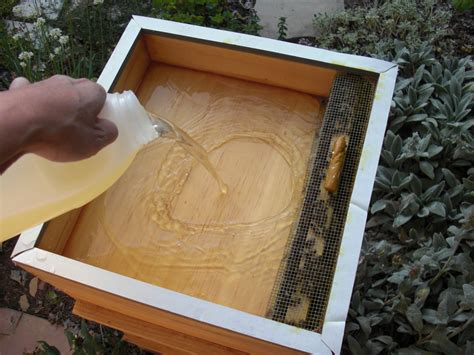 Bee Hive Feeders backyard bee hive how to use a hive top feeder part ii